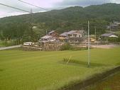 名古屋:梯田