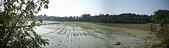白河970118:白河稻田