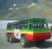 溫哥華:冰原雪車