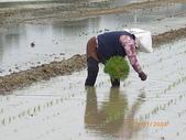 白河970118:農婦