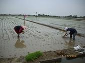 白河970118:農婦三人