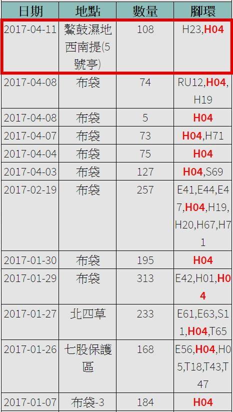 黑琵H04在台紀錄-20170107之後-20170411-後製.jpg - 黑面琵鷺