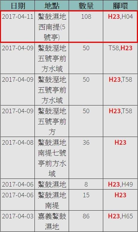 黑琵H23在台紀錄-20170102之後-20170411之1-後製.jpg - 黑面琵鷺