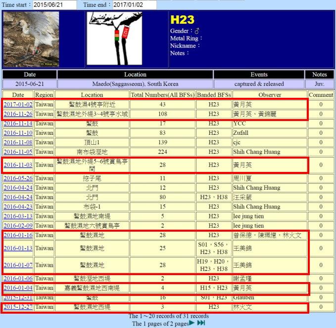黑面琵鷺H23於20150621繫放後在台紀錄-1-20170102-縮-後製.jpg - 黑面琵鷺
