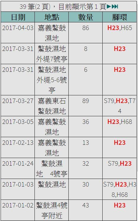 黑琵H23在台紀錄-20170102之後-20170403.jpg - 黑面琵鷺