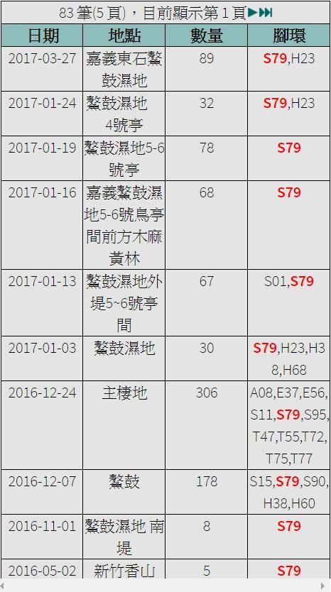 黑琵S79在台紀錄-20170327.jpg - 黑面琵鷺
