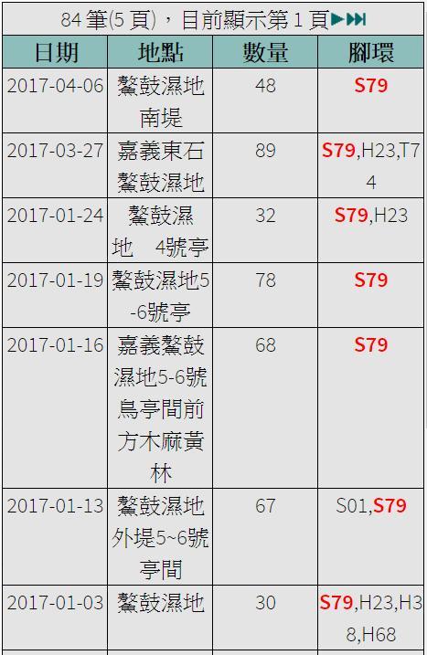 黑琵S79在台紀錄-20170103之後-20170406.jpg - 黑面琵鷺