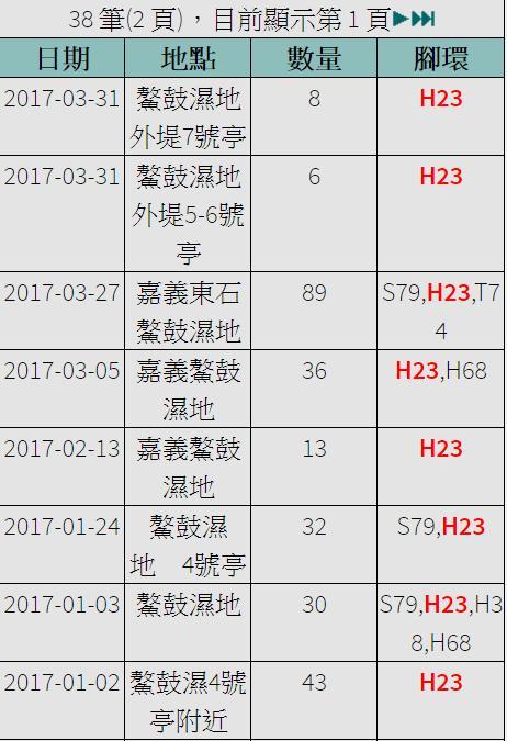 黑琵H23在台紀錄-20170102之後-20170331.jpg - 黑面琵鷺