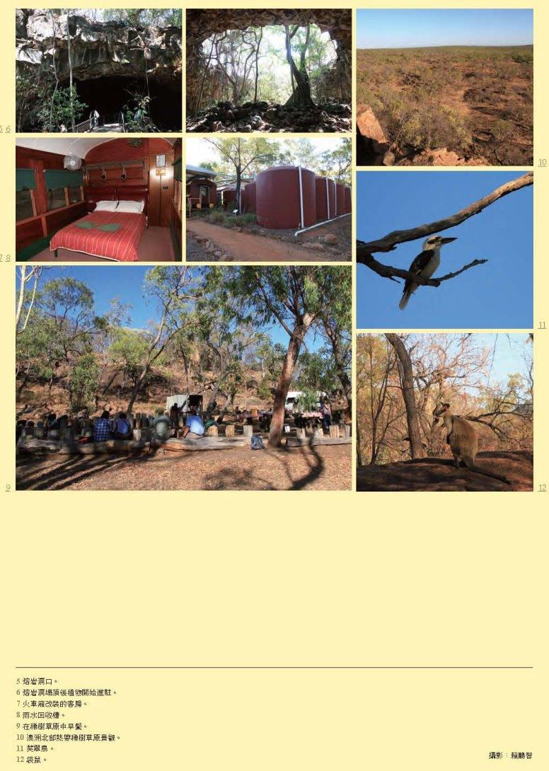 綠雜誌GREEN38_澳洲Undara Experience 度假村的合縱連橫-賴鵬智-201512_頁面_5-裁切-縮.jpg - 日誌用相簿