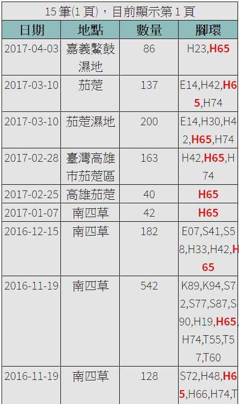 黑琵H65在台紀錄-20161119之後-20170403.jpg - 黑面琵鷺