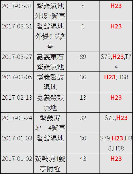 黑琵H23在台紀錄-20170102之後-20170411之2.jpg - 黑面琵鷺