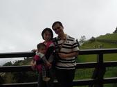 盧山清境遊Day2_20111113【小脩1Y4M】:DSCN2659.JPG
