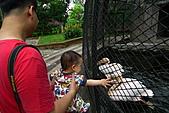 新竹市立動物園_20110416【小脩9m11d】:P1040667.JPG