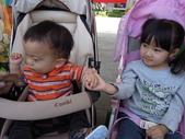 好熱的木柵動物園_20110424【小脩9m19d】:DSCN0771.JPG