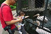 新竹市立動物園_20110416【小脩9m11d】:P1040670.JPG