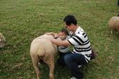 盧山清境遊Day2_20111113【小脩1Y4M】:DSC_4908.JPG