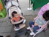 好熱的木柵動物園_20110424【小脩9m19d】:DSCN0766.JPG