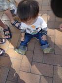 盧山清境遊Day2_20111113【小脩1Y4M】:P1060743.JPG