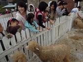盧山清境遊Day2_20111113【小脩1Y4M】:DSCN2674.JPG