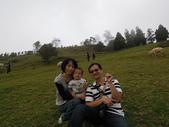 盧山清境遊Day2_20111113【小脩1Y4M】:DSCN2685.JPG