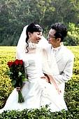 啟昇&若嵐  婚紗照:_DSC0128