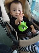 再遊木柵動物園_20111029【小脩1Y3.5M】:DSCN2439.JPG