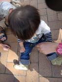 盧山清境遊Day2_20111113【小脩1Y4M】:P1060745.JPG