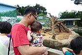 新竹市立動物園_20110416【小脩9m11d】:P1040658.JPG