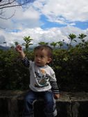 盧山清境遊Day2_20111113【小脩1Y4M】:DSCN2637.JPG