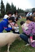 盧山清境遊Day2_20111113【小脩1Y4M】:DSC_4872.JPG