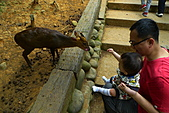 新竹市立動物園_20110416【小脩9m11d】:P1040685.JPG