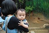 新竹市立動物園_20110416【小脩9m11d】:DSC_7921.JPG