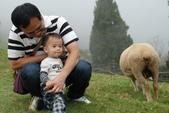 盧山清境遊Day2_20111113【小脩1Y4M】:DSC_4954.JPG