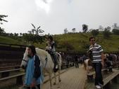 盧山清境遊Day2_20111113【小脩1Y4M】:DSCN2714.JPG