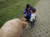 盧山清境遊Day2_20111113【小脩1Y4M】:DSC_4855.JPG