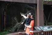 再遊木柵動物園_20111029【小脩1Y3.5M】:DSC_4167.JPG