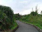 宜蘭新水自行車道:新水自行車道_011防風林道3.JPG