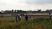 20100215美濃花海之旅:DSC00065.jpg