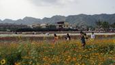 20100215美濃花海之旅:DSC00068.jpg