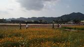 20100215美濃花海之旅:DSC00084.jpg