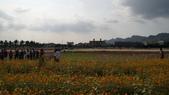 20100215美濃花海之旅:DSC00083.jpg
