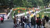 20100216佛光山:DSC00336.jpg