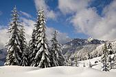 歐洲風情:Fresh Snow Over Denny Mountain, Mount Baker-Snoqualmie National Forest, Washi