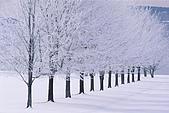 歐洲風情:Glimmerglass State Park, New York.jpg