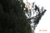 武陵農場:1991065640.jpg