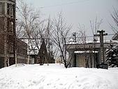 Hokkaido0301:IMG_1986.JPG