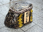 京阪神五日遊:IMG_0568.JPG