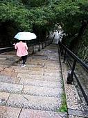 京阪神五日遊:IMG_0578.JPG