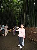 京阪神五日遊:IMG_0610.JPG
