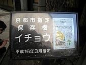 京阪神五日遊:IMG_1110.JPG